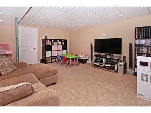 Large Rec/Media Room in the Basement